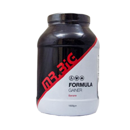 Mr Big - Formula Gainer - 1500g